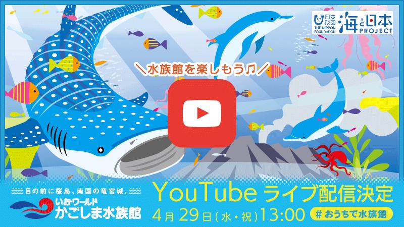 4月29日(水・祝)『#おうちで水族館』いおワールド かごしま水族館のライブ配信決定!