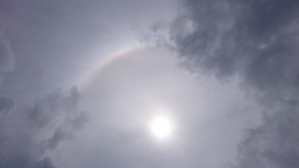虹を見ましたよ